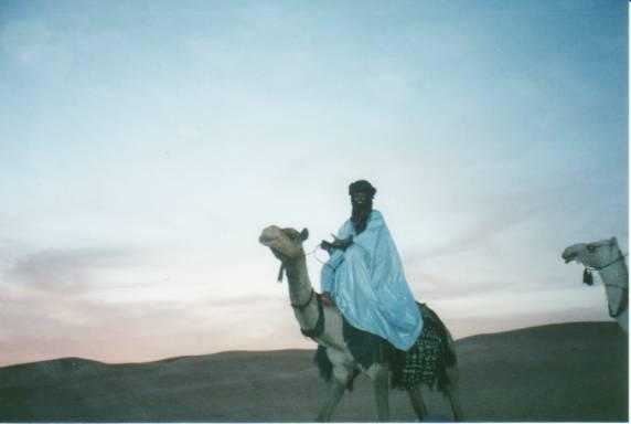 Tuareg rides a dromedary.