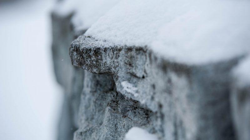 Snow Talk